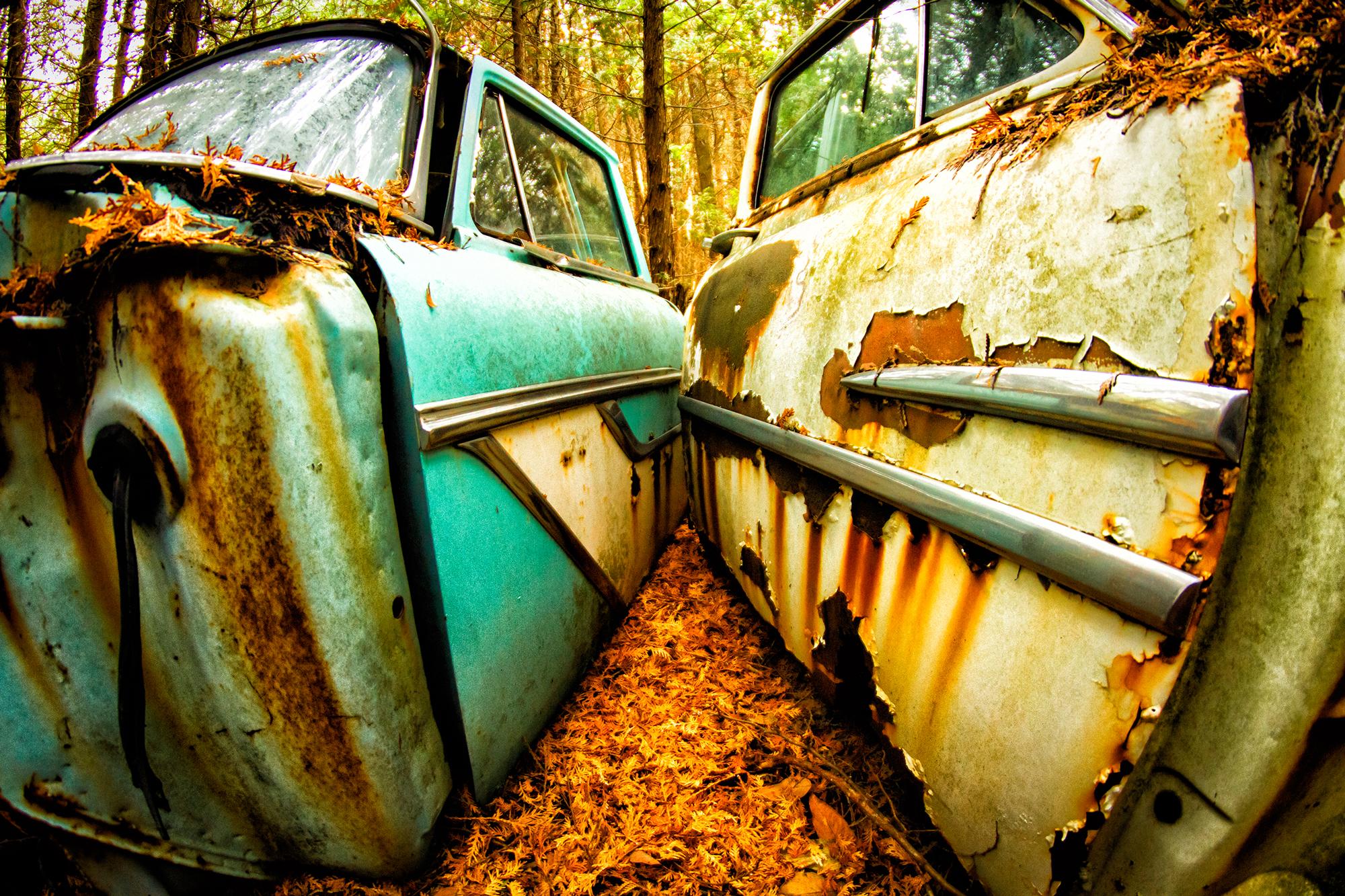 Rusted doors in a junkyard make auto eROTica art