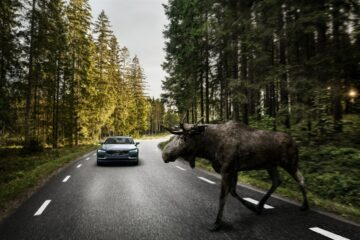 Volvo S90 large animal detection