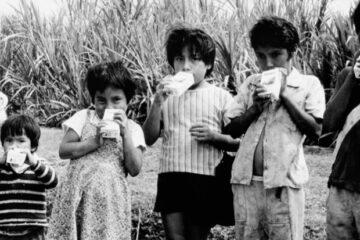 Kids and Milkshakes