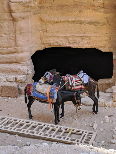 The-walk-to-Petra